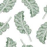 Kale bezszwowy deseniowy wektor ilustracja wektor