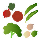 Kale, broad beans, beets,  isolated on white background. Editable and design suitable  illustration. Royalty Free Stock Images