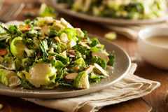 Kale and Brussel Sprout Salad. With Almons and Lemon Dressing royalty free stock photography