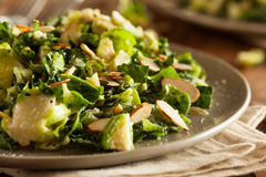Kale and Brussel Sprout Salad. With Almons and Lemon Dressing royalty free stock photos