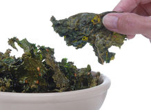 Kale Chips Royalty Free Stock Photography
