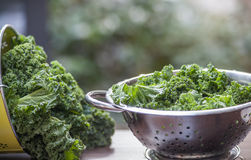 Kale in a colander process window light background. Superfood Stock Image