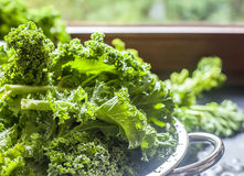 Kale in a colander window light background. Kale in a colander process window light background superfood Stock Photo