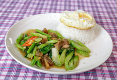 Kale with crispy pork on steamed rice Royalty Free Stock Photos