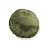 Kale and dark green round watercolor brush stroke isolated on white background. Watercolour stains texture. Olive drab color circl. E shape. Round background stock illustration