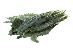 Kale de Lacinato Fotos de Stock Royalty Free