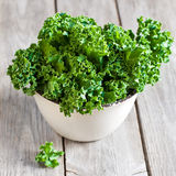 Kale. Fresh green kale in ceramic bowl. Selective focus Stock Photography