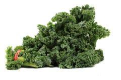 Kale frondoso fresco imagem de stock