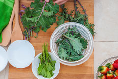 Kale and herbs vegan organic vegetables Stock Photo