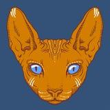 Kale het gezichtsgrafiek van de sfinxkat, overzicht Royalty-vrije Stock Fotografie