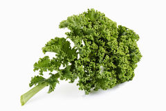 Kale isolated on white Royalty Free Stock Image
