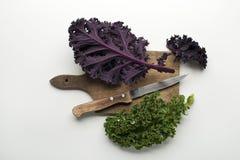 Kale leaf Royalty Free Stock Images