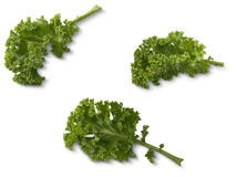 Kale Stock Images