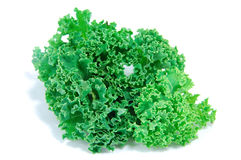Kale leaves Royalty Free Stock Photo