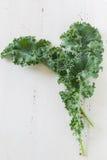 Kale Leavs royalty free stock image