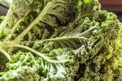 Kale macro. Kale buch macro daylight superfood Stock Image