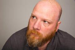 Kale mens die met baard omhoog kijken Stock Afbeelding