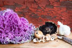 Kale, mushrooms and garlic in a rustic kitchen Royalty Free Stock Images