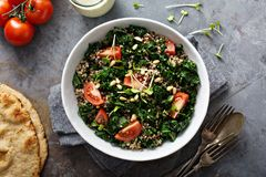 Kale and quinoa salad with tomatoes. Vegan kale and quinoa salad with tomatoes Stock Images