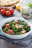 Kale and quinoa salad with tomatoes. Vegan kale and quinoa salad with tomatoes Stock Photos