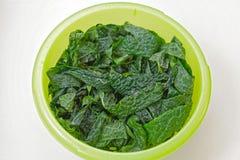 Kale salad Stock Images