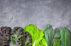 Kale salad bottom side Stock Image