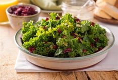 Kale Salad. A delicious kale salad with dried cranberry and pumpkin seed Stock Images