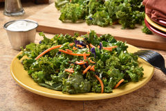 Kale salad Stock Image