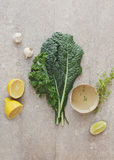 Kale salad with garlic and lemon vinaigrette Stock Photos