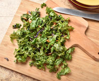 Kale salad Royalty Free Stock Image