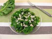 Kale salad with pearl barley Royalty Free Stock Photography