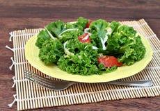 Kale Salad, tomato, lemon zest and parmesan. Royalty Free Stock Photos