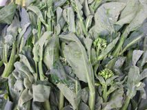 Kale for sale Royalty Free Stock Photo