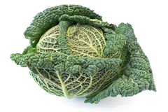 Kale vegetable Royalty Free Stock Photography