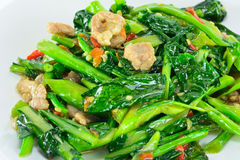 Kale vegetable fried with oil with pork Stock Image