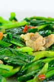 Kale vegetable fried with oil and pork Stock Images
