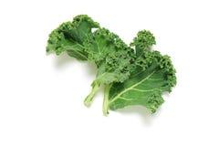Kale vegetable Stock Photos