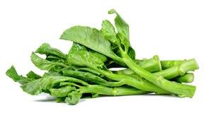 Kale warzywo odizolowywający na białym tle Fotografia Royalty Free