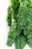 Kale on white background Stock Images