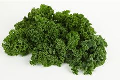Kale with white background. Green kale with white background Stock Image