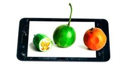 Kalebassen och frukten i bruten begreppsidé för telefon På whitbakgrund Arkivfoto