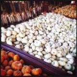 Kalebasspumpor och majs Royaltyfri Bild