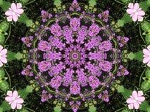 kaleidescope lavendar Fotografia Royalty Free
