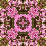 kaleidoscope предпосылки Стоковое Изображение RF
