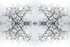 Kaleidoscope 2. One of a series of ten Kaleidoscopic images made from manipulated photographs Royalty Free Stock Photos
