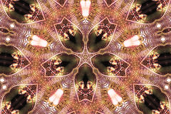 kaleidoscope Royaltyfri Foto