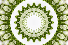 KALEIDOSCOPE 7. Kaleidoscope from cucumbers and salad Royalty Free Stock Photography