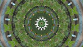 kaleidoscope стоковые фото