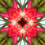 Kaleidoscope Background Stock Images