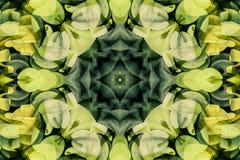 Kaleidoscope with beautiful ornamental of color Stock Photos